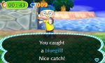 Animal Crossing New Leaf (18)