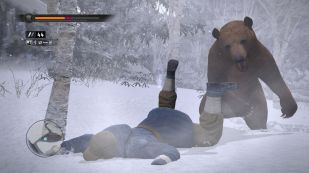 Bears fight dirty. They don't wait for you to get up before beating you up.