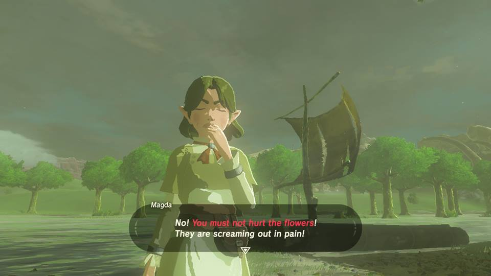 Breath of the Wild Dont Hurt Flowers