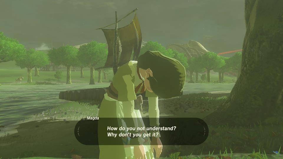 Breath of the Wild Dont Understand