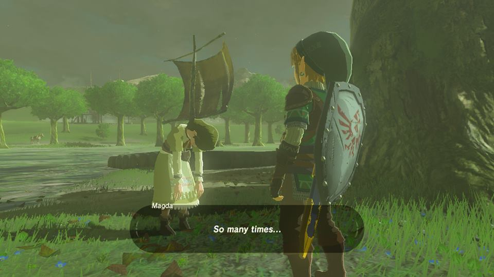 Breath of the Wild So Many Times