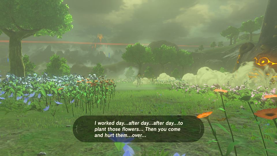 Breath of the Wild Worked Day After Day