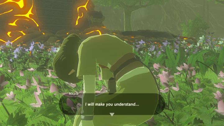 Breath of the Wild You Will Understand